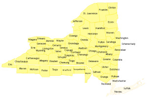 Statewide Service Areas Map